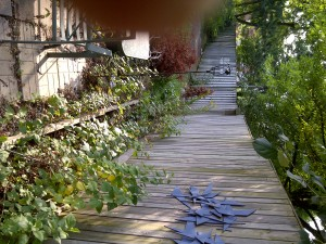 Side Walkway Before