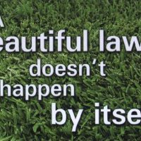 Professional Lawn Care Helps