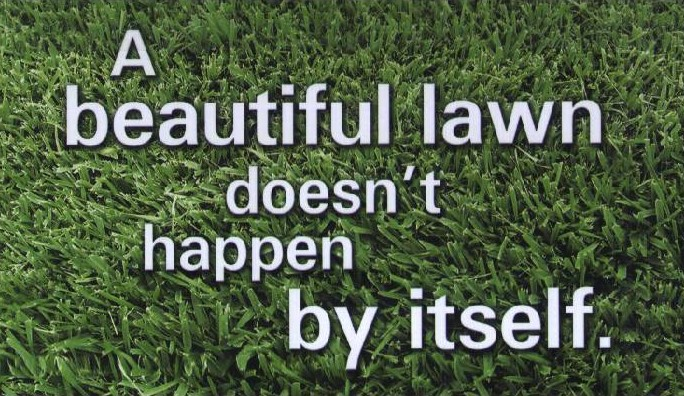 We make your lawn look GREAT